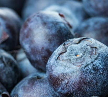 Top 5 Foods To Strengthen Your Immune System