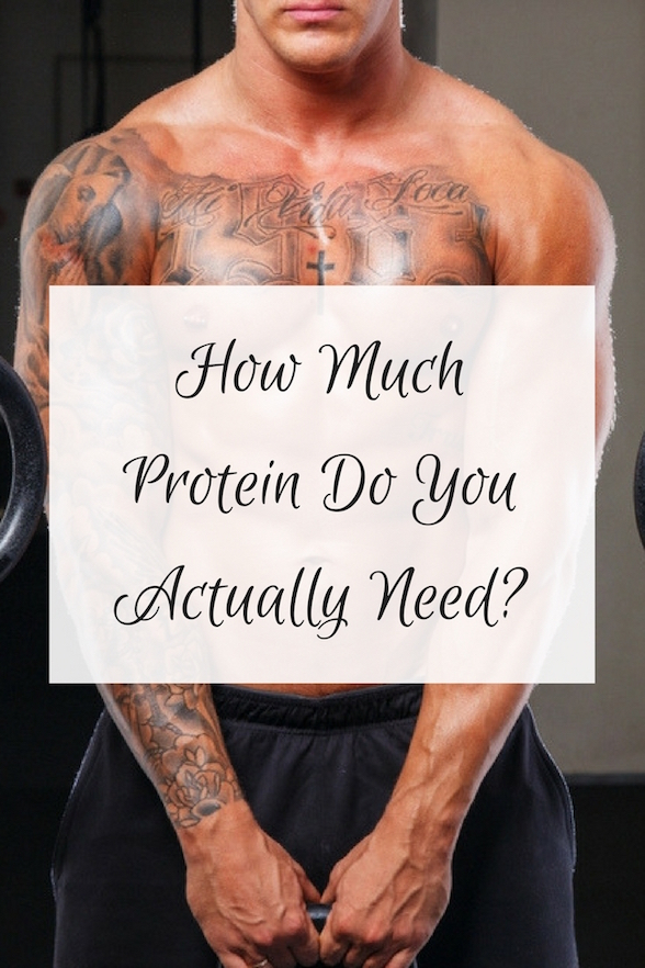 How Much Protein Do You Really Need Oliviabudgen Blog