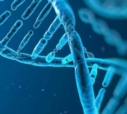 Epigenetics: Do Your Genes Determine Your Health?
